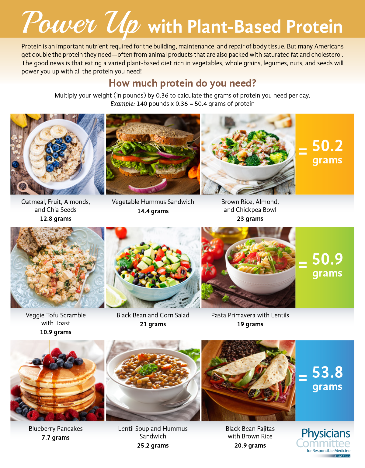 17199-BMC-Plant-based-Protein-Infographic
