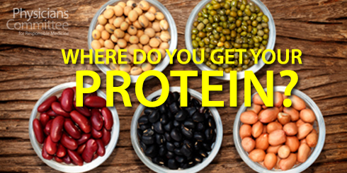 get-your-protein2