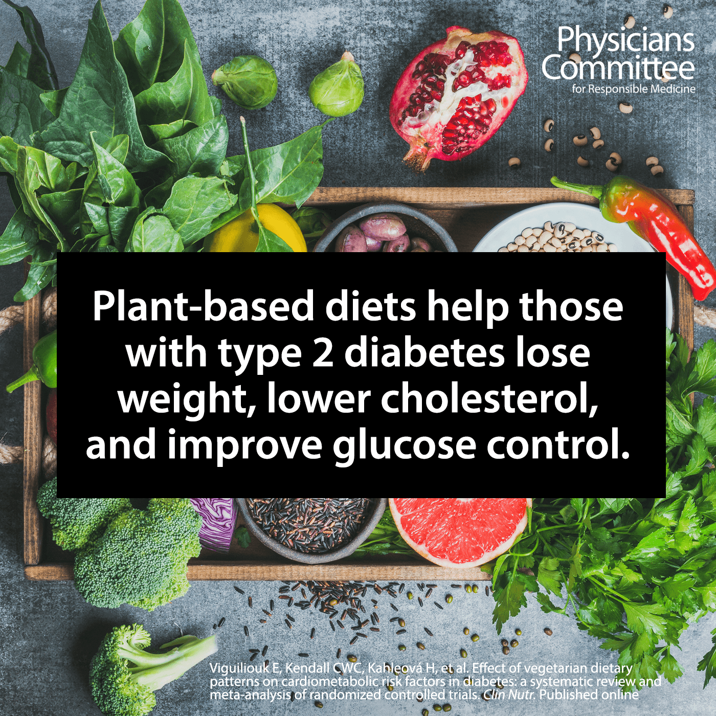 diabetes and plant-based diets