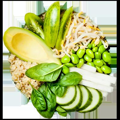 plant based diet reversing diabetes