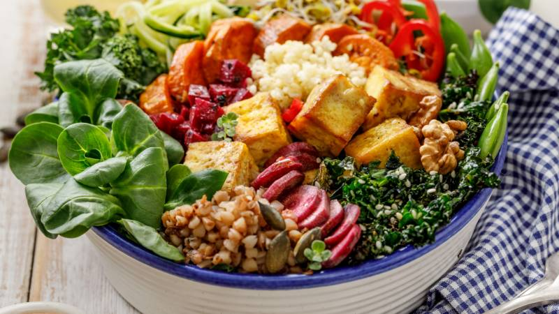 protein and the plant based diet