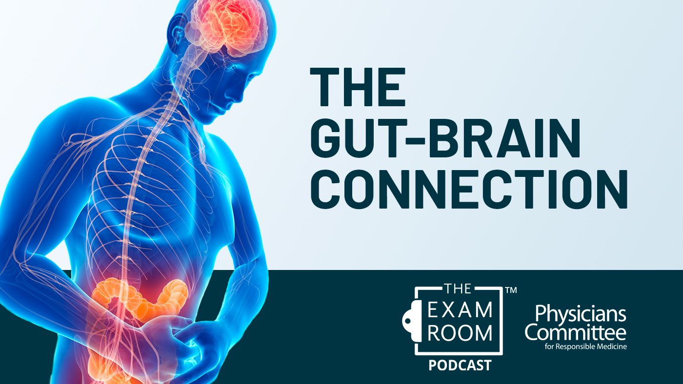 Why Your Gut and Brain Can't Stop Talking