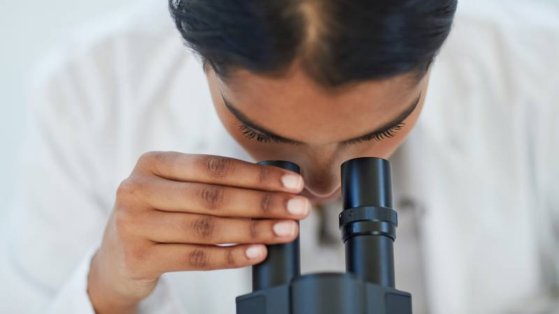 looking into microscope