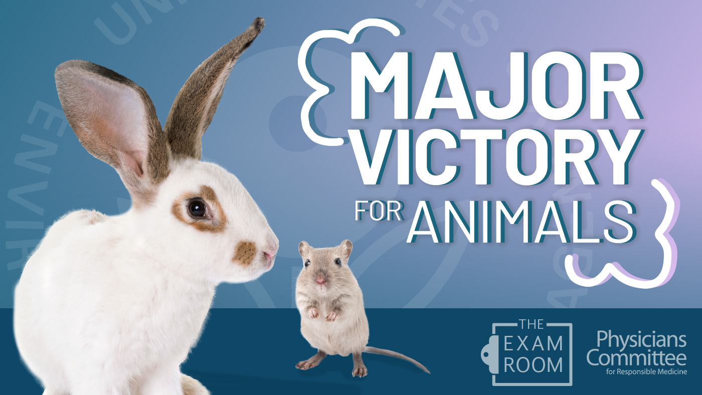 A Major Victory for Animals