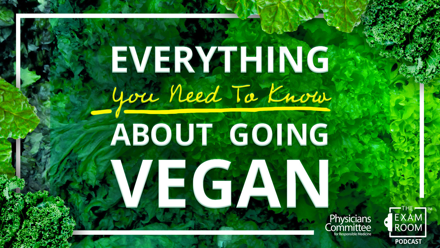 Everything You Need To Know About Going Vegan