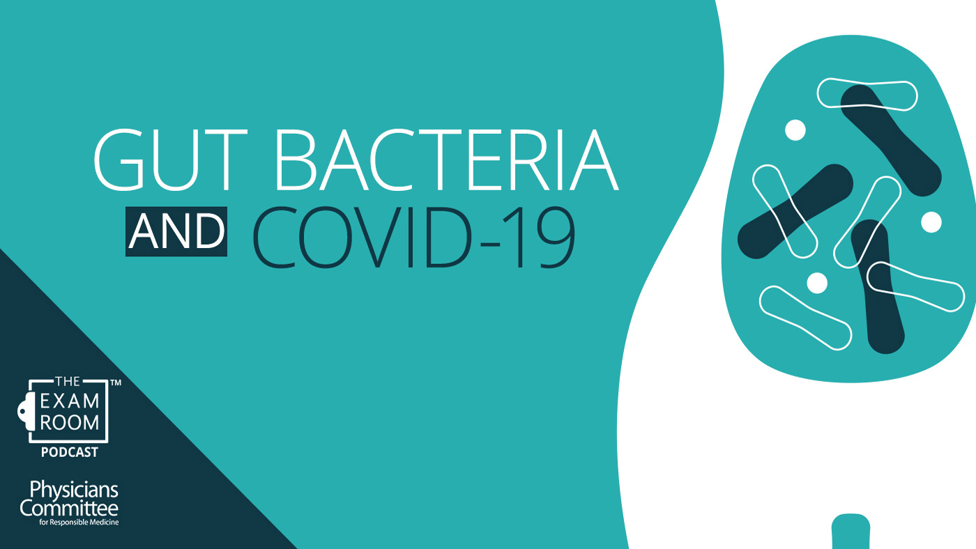Gut Bacteria and COVID-19
