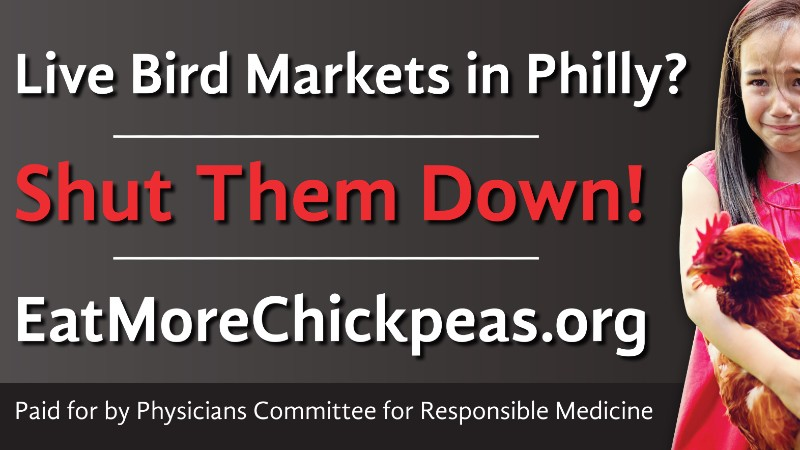 Hard-Hitting Billboard Targets Live Bird Markets  in Philadelphia