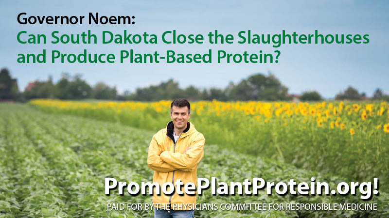 Doctors Urge South Dakota Governor to Promote Plant Protein