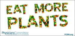 Eat More Plants decal