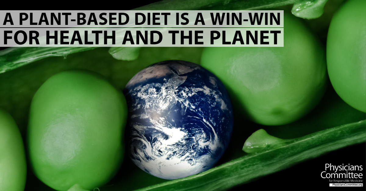 are plant based diets better for the environment