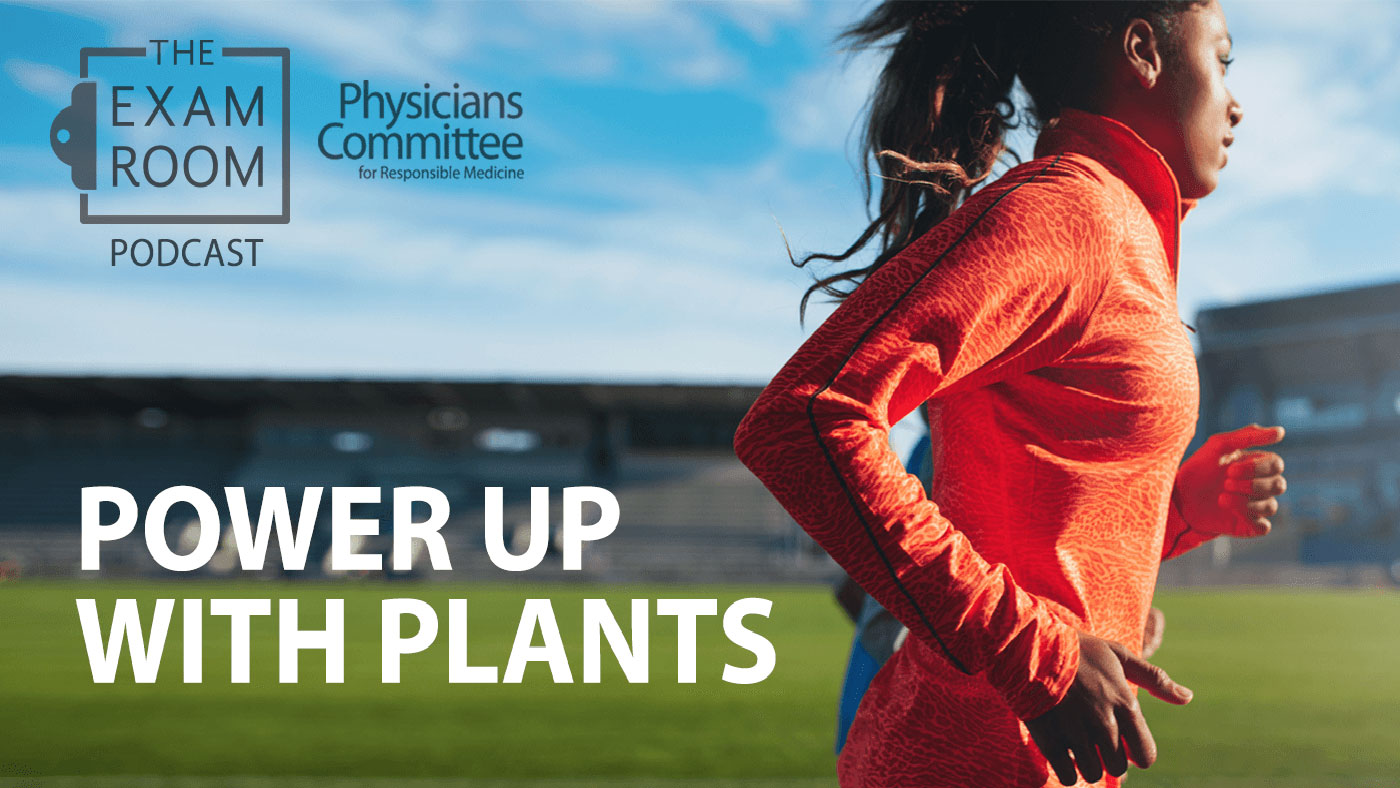 The Exam Room Power Up With Plants