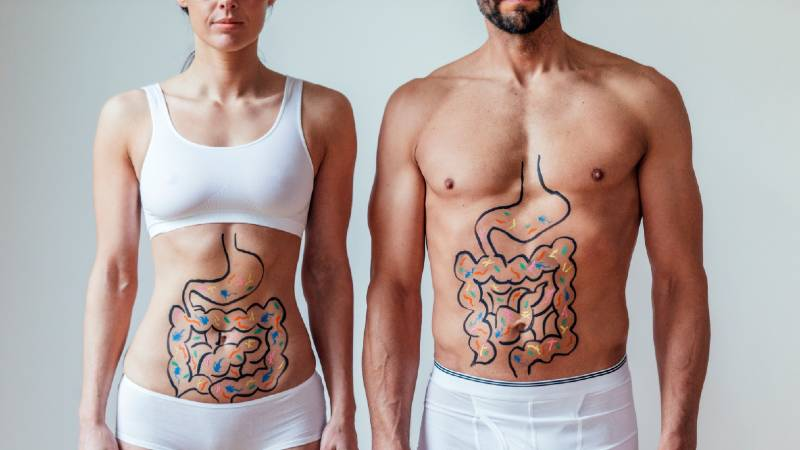 gut health and plant based diet